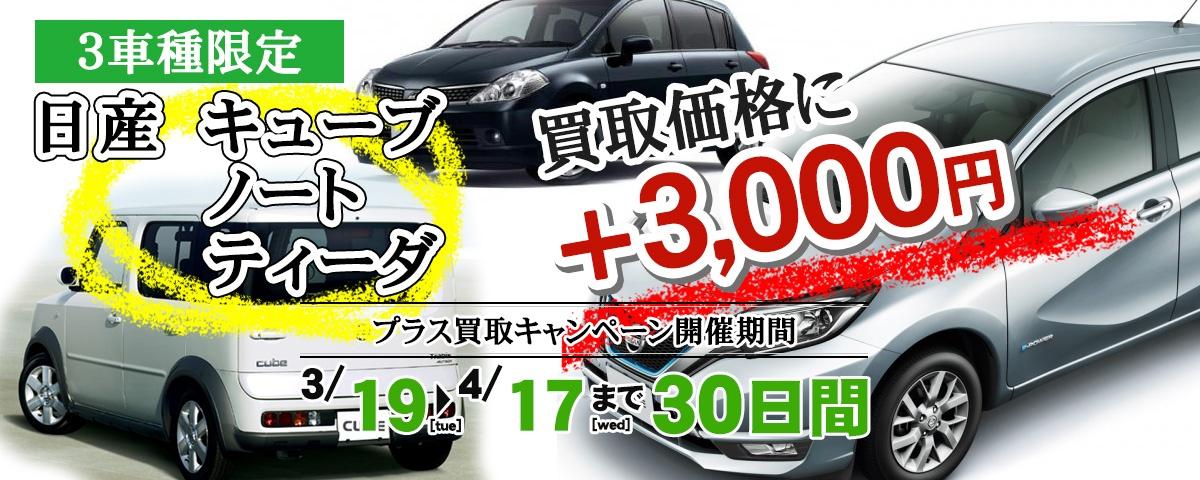 日産キューブ・ティーダ・ノート買取3,000円プラスキャンペーン