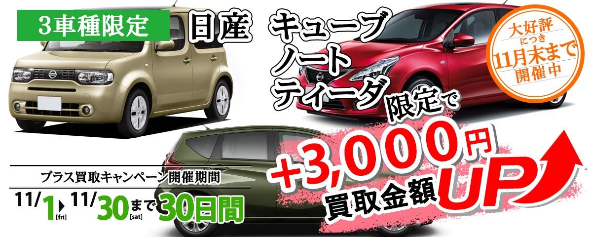 キューブ・ノート・ティーダ限定買取に3,000円プラスキャンペーン